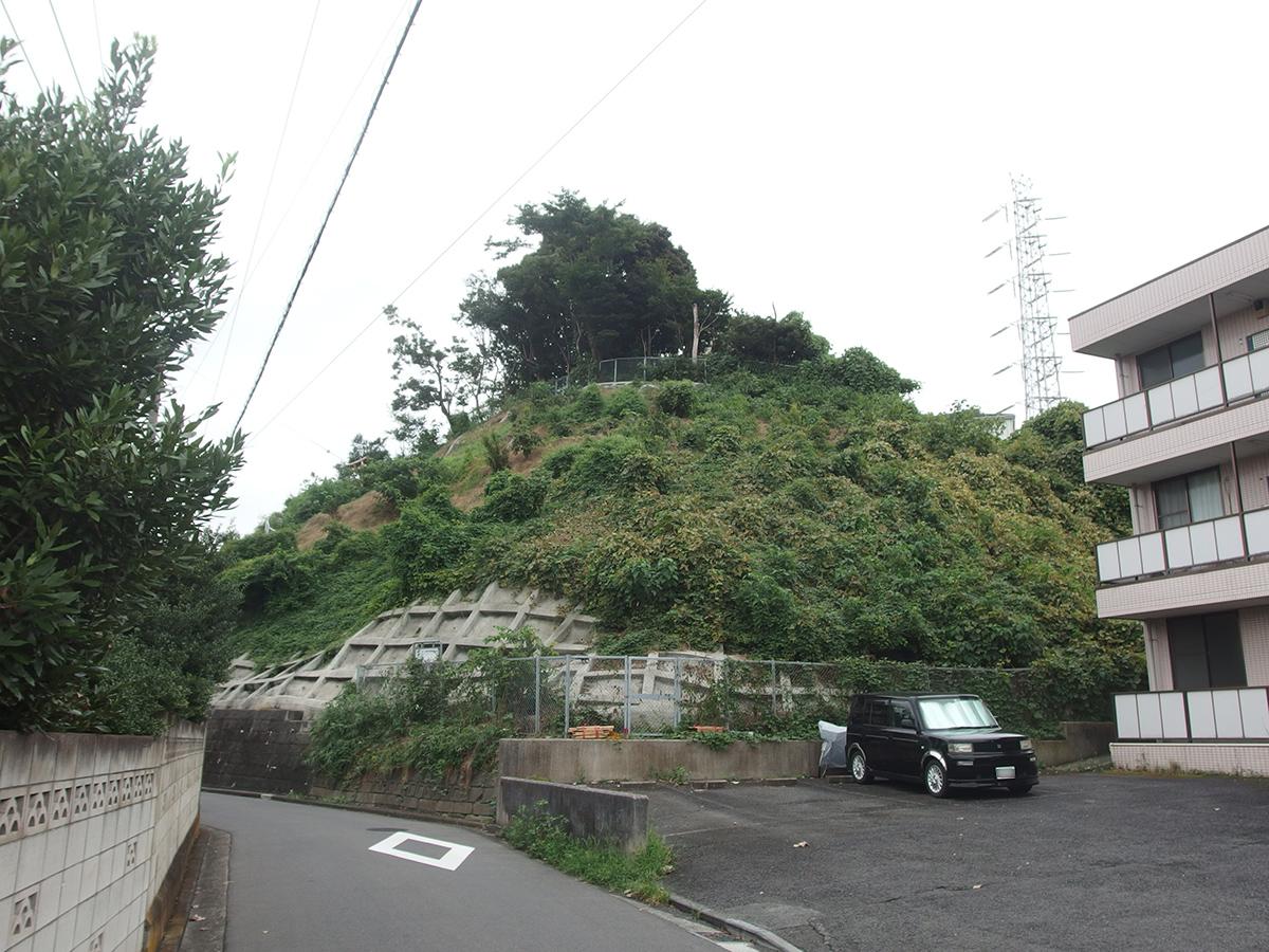 駒岡三峰社写真