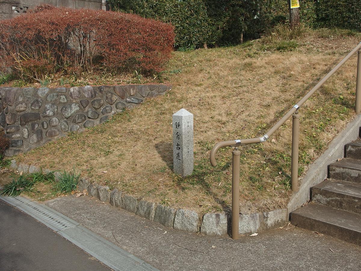 鞍掛の松公園写真