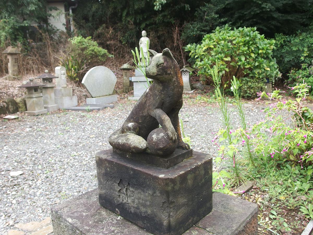 日野白笹稲荷神社(横浜市港南区日野中央)写真