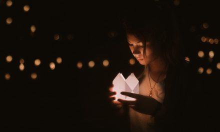 L'ombre des lucioles (synopsis du roman)