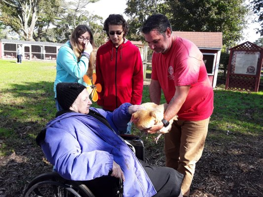 petting a chicken at Walk to End Alzheimer's