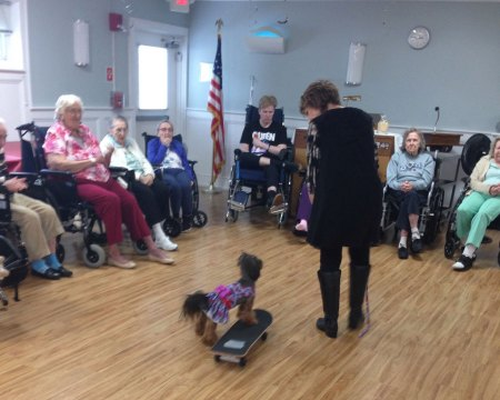 Nursing Home Week 2019 - dog therapy - 2