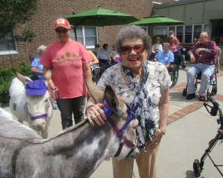 visiting donkeys with residents