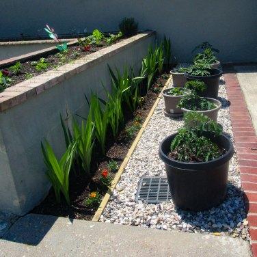 herb & vegetable garden - 1