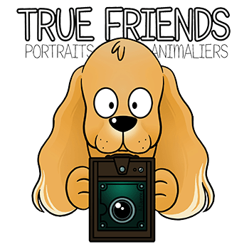 true frends png petit
