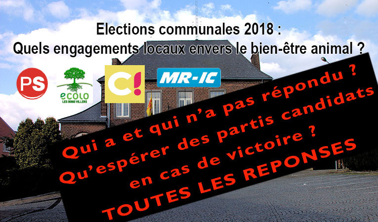Elections_communales_lbv-reponses