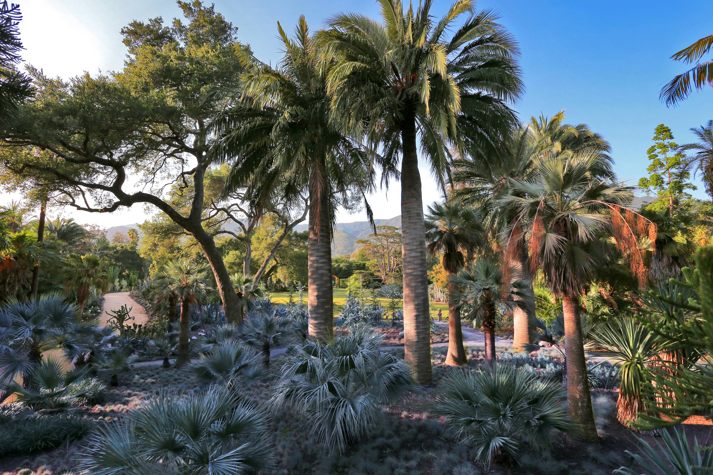 Parks and Gardens in Santa Barbara  Plan Your Trip