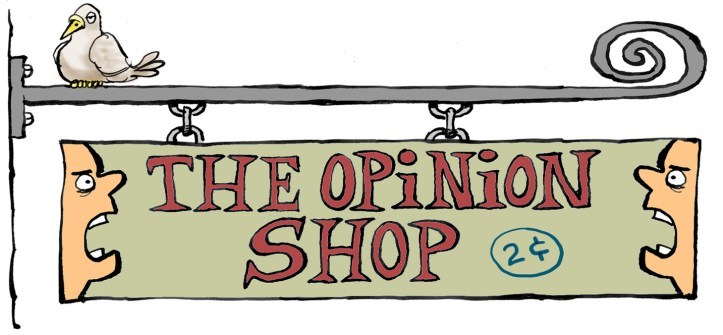 opinionshop2