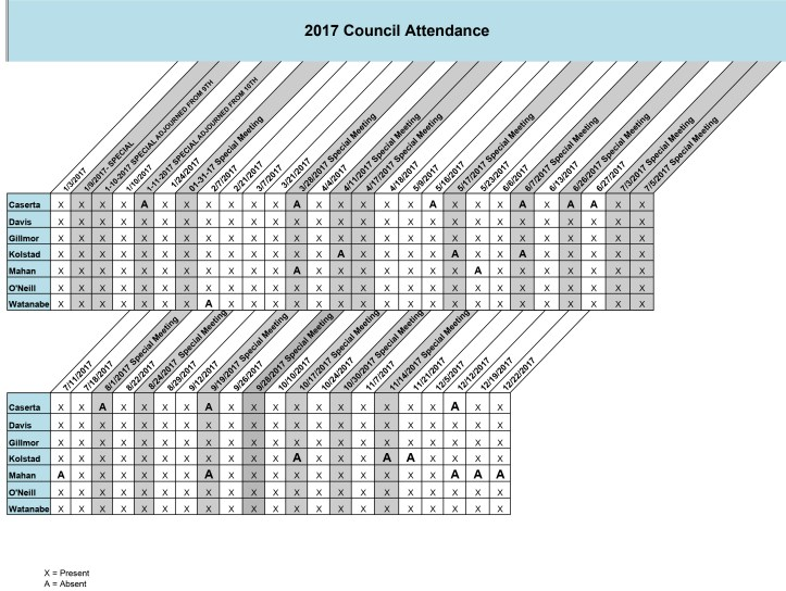Council Attendance 2017