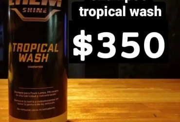 Shampoo Vehicular