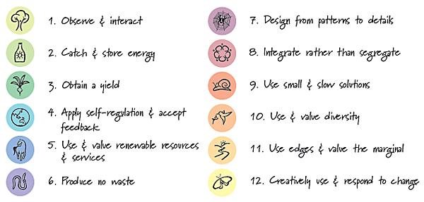 The Permaculture Principles are 1. Observe & Interact, 2. Catch & Store Energy, 3. Obtain a Yield, 4. Apply Self-Regulation & Accept Feedback, 5. Use & Value Renewable Resources & Services, 6. Produce No Waste, 7. Design from Patterns to Details, 8. Integrate Rather than Segregate, 9. Use Small & Slow Solutions, 10. Use & Value Diversity, 11. Use Edges & Value the Marginal, 12. Creatively Use & Respond to Change