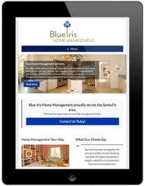 Blue Iris iPad Phase
