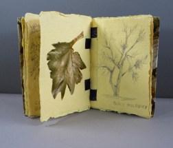 Trees by Phoebe Girard