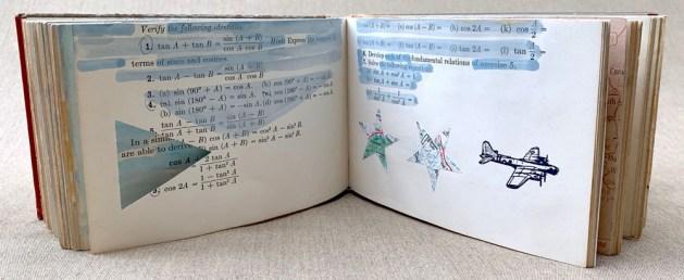 Aviator's Journal #2: The Observation Series by Susan Hart Henegar