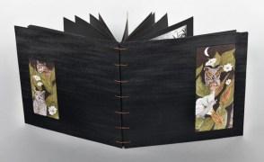 Night Journeys by Douglass Rankin