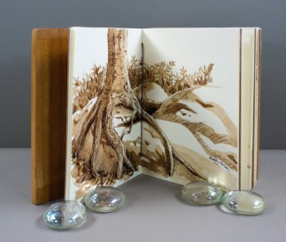 Rooted by Margy O'Brien