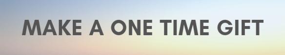 2019 Stewardship button one time gift
