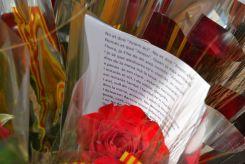 Rosas con poesía // Elisenda Colell