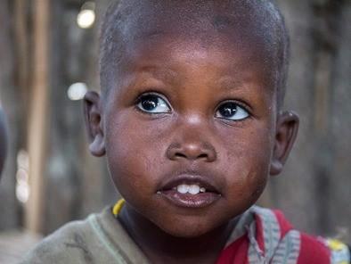 Enfant santé environnement évolution