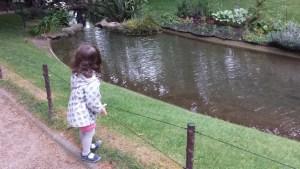 Nature verte et bleue - une petite fille au parc