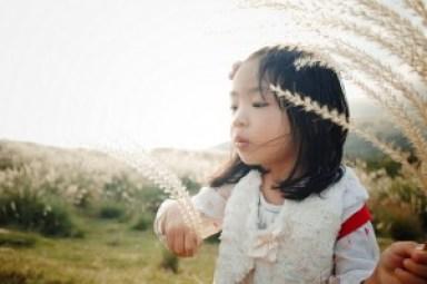 Fille puberté précoce pollutions environnementales