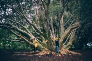 astuces lecteurs sante enfants environnement