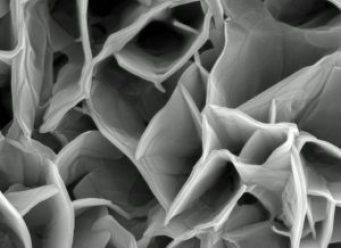 nano, nanoparticules, nanotechnologies, toxiques3