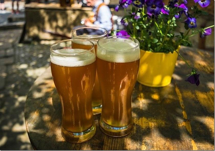 Bière d'épeautre