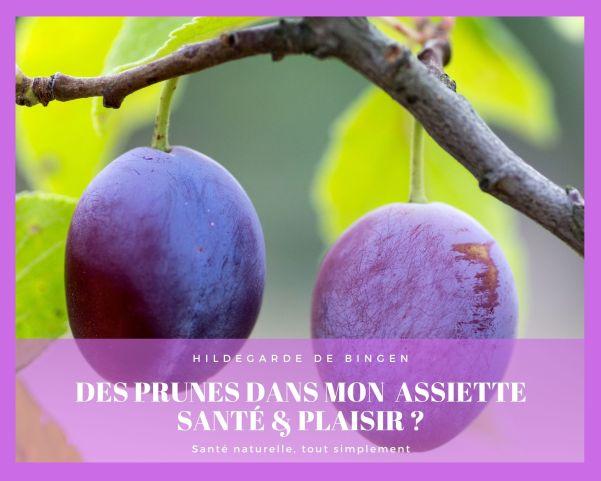 Les prunes dans l'alimentation selon Hildegarde de Bingen