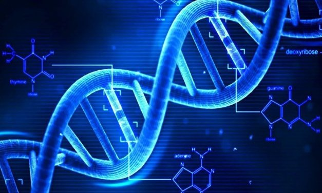 Troubles neuro-développementaux: comment mieux estimer l'effet des mutations génétiques
