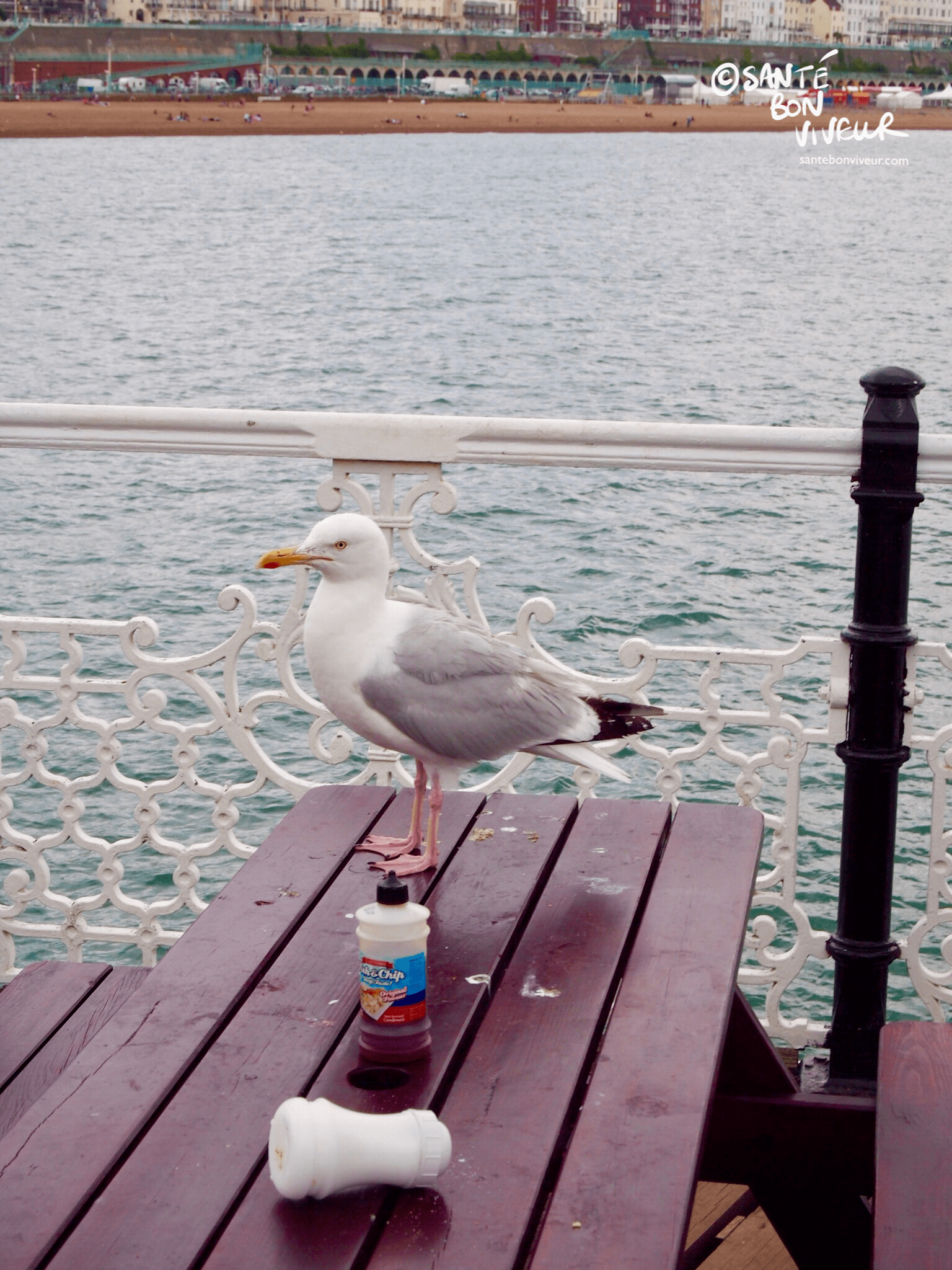 This seagull means fish & chips business....