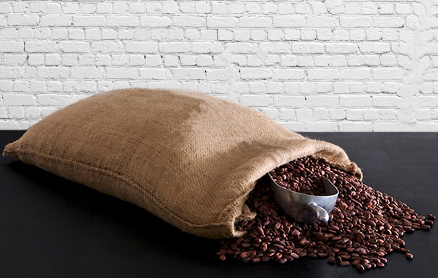 Sack of top quality cocoa beans before roasting. Craft Chocolate Making