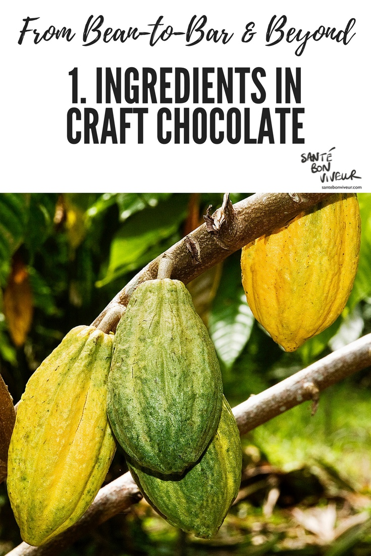 From Bean-to-Bar & Beyond: 1. Ingredients in Chocolate