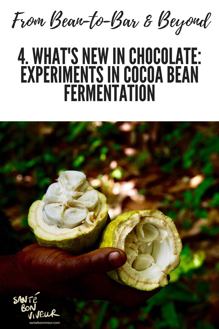 What's new in chocolate: experiments in cocoa bean fermentation blog post