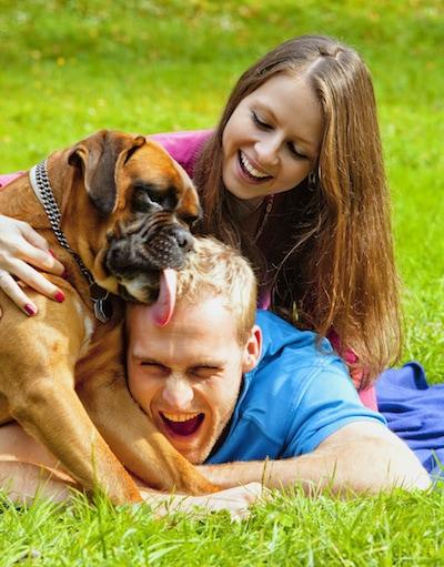 Elle Fait L'amour Avec Son Chien : l'amour, chien, Nouveau, Chien, Arrive, Quelle, Place, Cœur, Maîtres, Dossiers, SantéVet