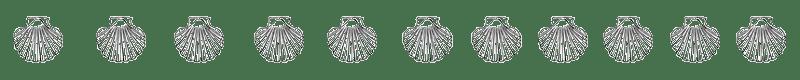 Die Muschel, das Zeichen für den Jakobsweg
