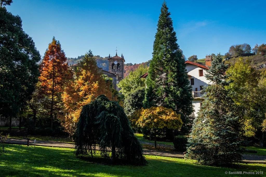 Entre árboles de colores
