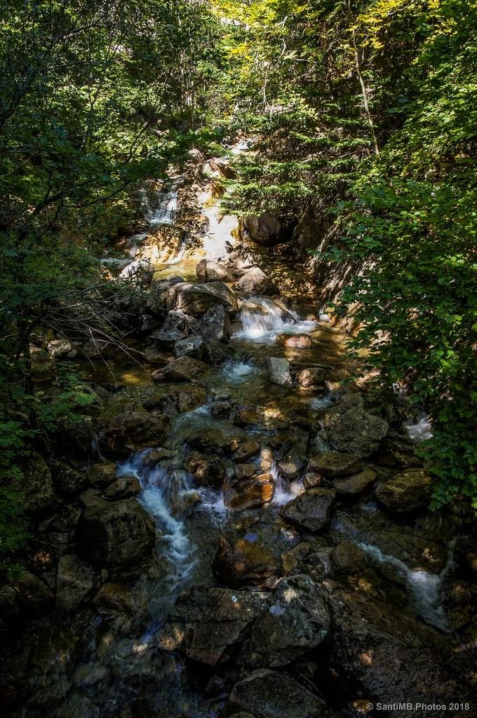 Agua de la montaña