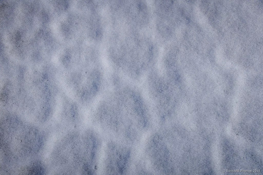Tejido de nieve