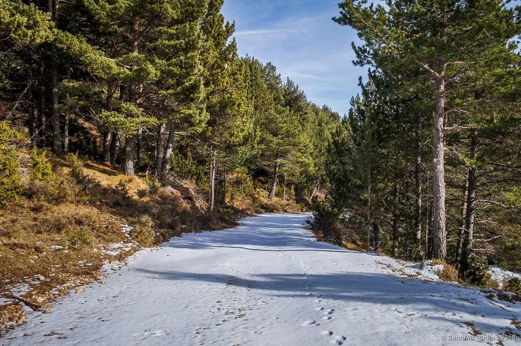 El camino blanco