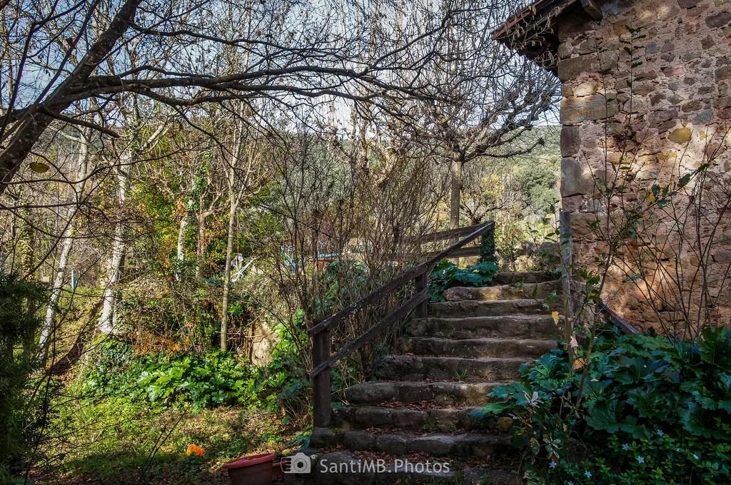 La escalera de piedra