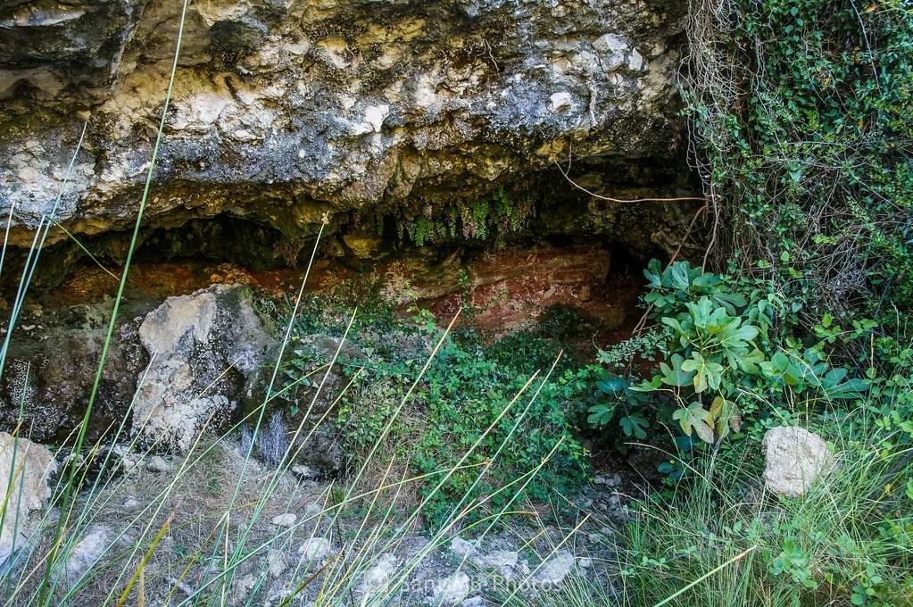 La Font de la Cova