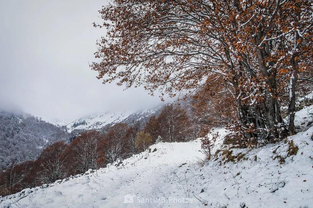 Invierno en otoño