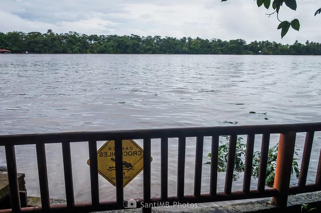 Yo no me metería en el agua