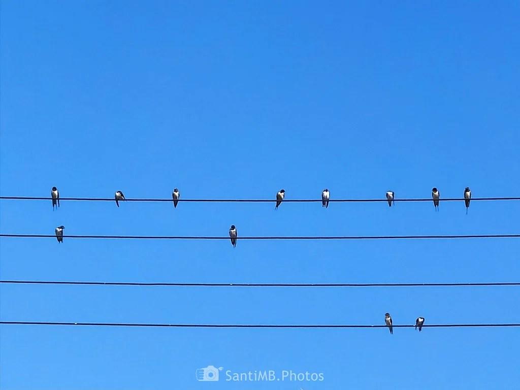 Cable libre