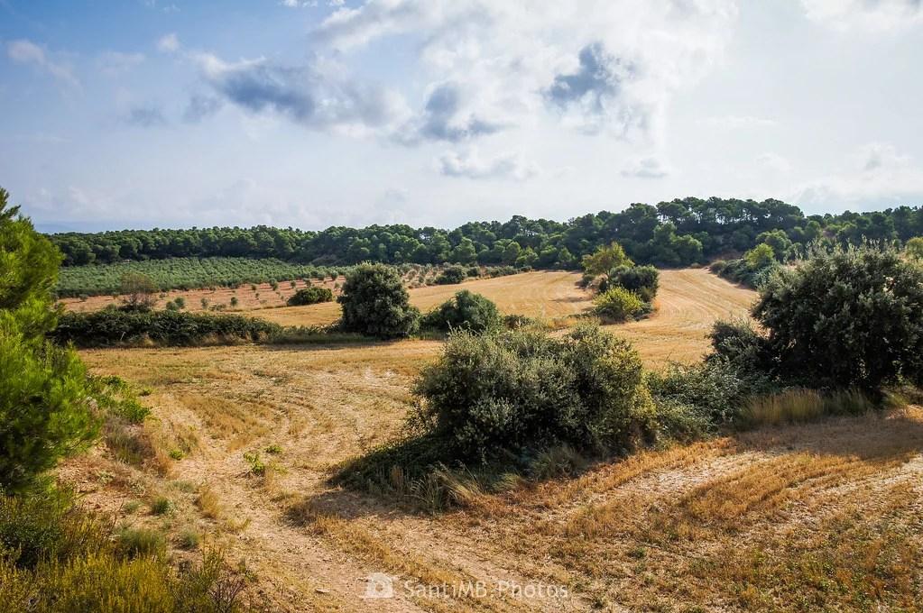 Campos de Vallclara