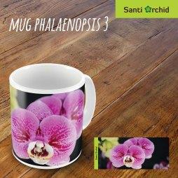 mug phalaenopsis 3