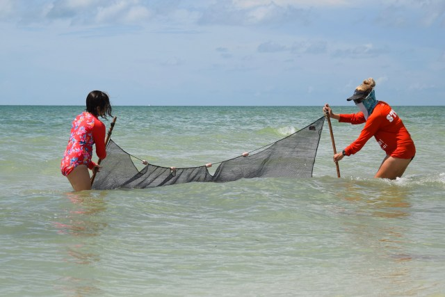 Sanibel Sea School To host Educational Programs This Fall