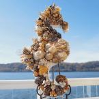 Shell Seahorse by Andrea Schopf