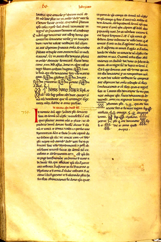 Page from the Cartulary of Sant Cugat del Vallès